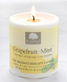 "Grapefruit-Mint 3x3"" Soy Pillar Candle"