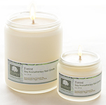 Forest - Soy Aromatherapy Spa Candle